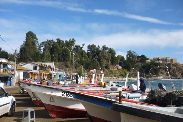 Small-scale fisheries in Chile
